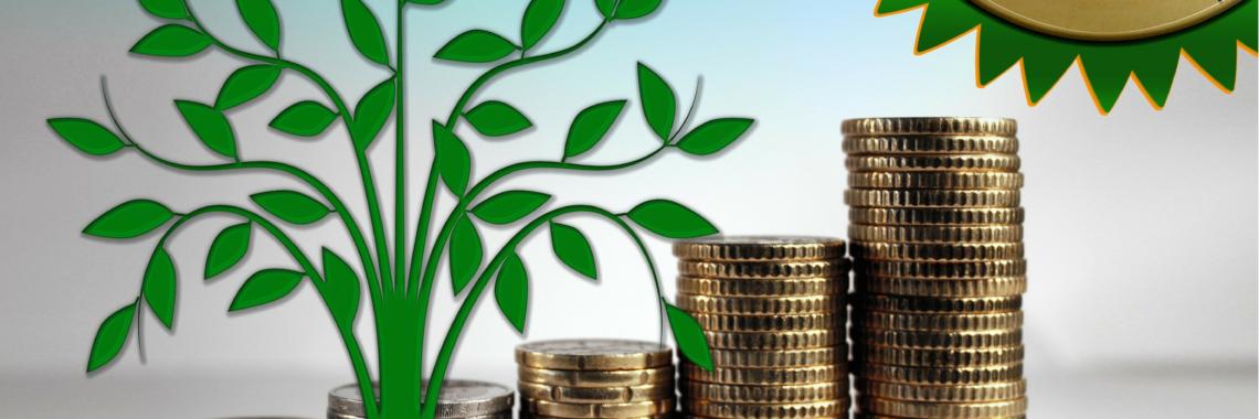 groeiscenario en bedrijfsplan