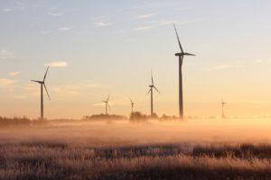 duurzaam ondernemen met Fiducie Rotterdam en omstreken - financiele administratie en belastingaangifte