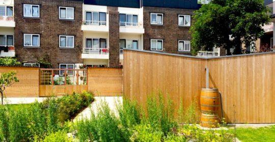Administratie uitbesteden stichtng en vereniging De Tussentuin maakt openbare ruimtes in Rotterdam groener